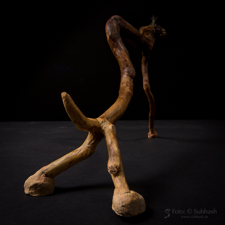"""Iris Lindner: """"3-beiniger Hund"""""""