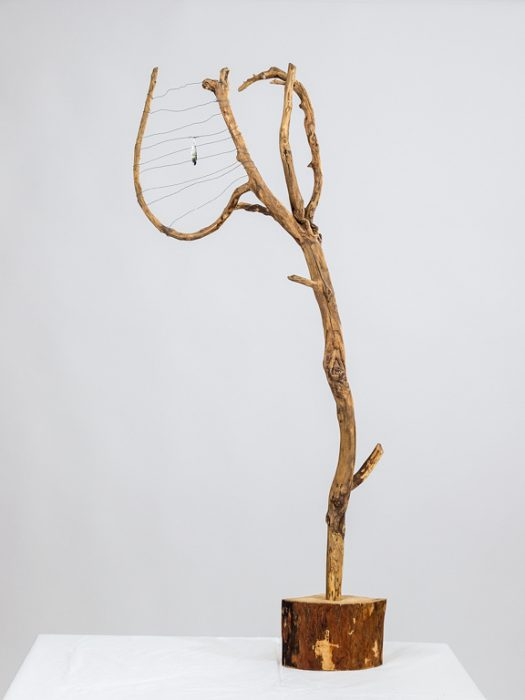 "Iris Lindner: ""Neptuns Harfe"""